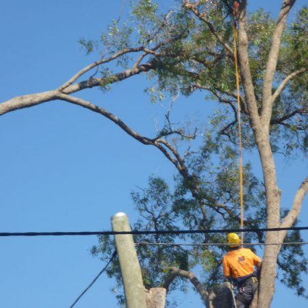 Working near power lines - nearly there